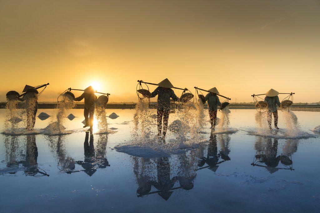 The Five Strivings - Thailand salt harvesting